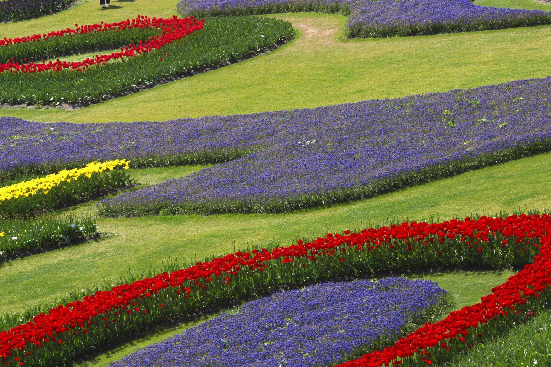 c1 Оформление цветников – несколько простых правил