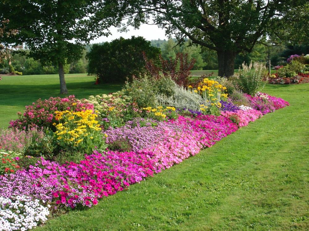 c2 Оформление цветников – несколько простых правил