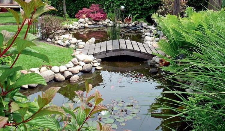 15 Пруд в саду, основные принципы создания