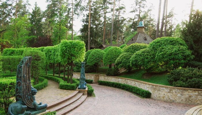 33 Правильное распределение пород деревьев в саду