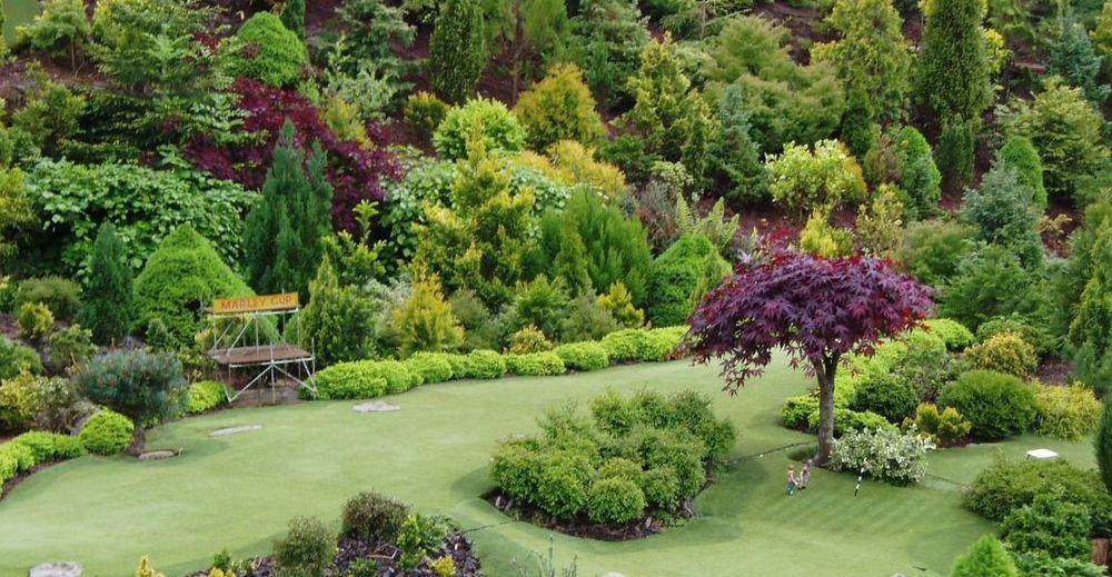 42 Правильное распределение пород деревьев в саду